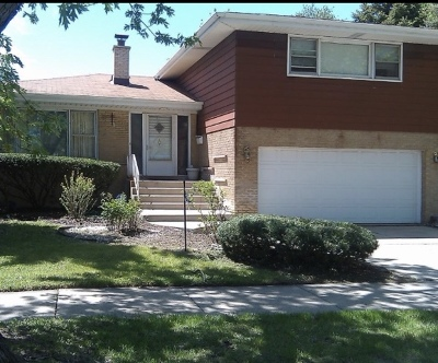 Dolton IL Single Family Home New: $145,000