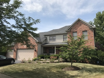 Bolingbrook Single Family Home For Sale: 5 Crenshaw Court