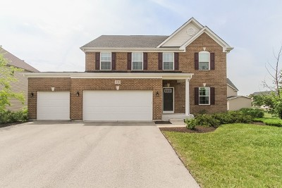 Plainfield Single Family Home For Sale: 13215 Wildwood Place