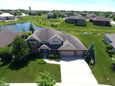 Mokena Single Family Home For Sale: 19242 Beaver Creek Lane