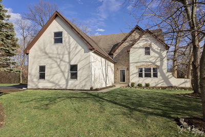 Wauconda Single Family Home For Sale: 26573 North Pond Shore Drive