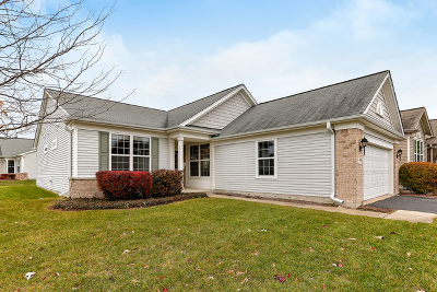 Elgin IL Single Family Home New: $245,500