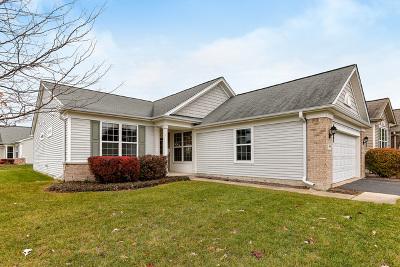 Elgin Single Family Home New: 2669 Venetian Lane