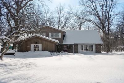 Palatine Single Family Home For Sale: 321 East Shady Drive