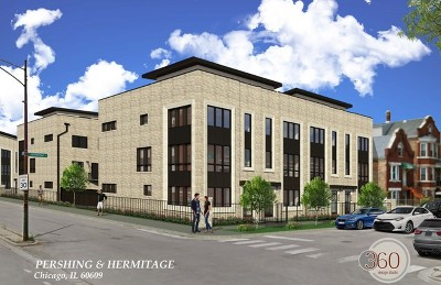 Chicago Condo/Townhouse New: 3848 South Hermitage Avenue