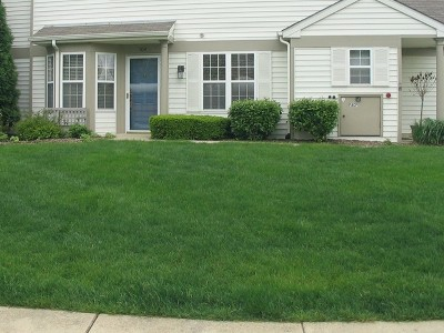Naperville Rental For Rent: 2511 Sheehan Drive #104