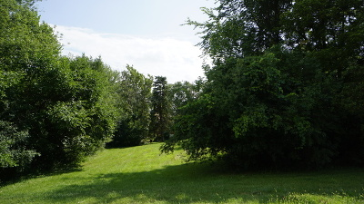 Palos Hills Residential Lots & Land For Sale: 8811 West 103rd Street