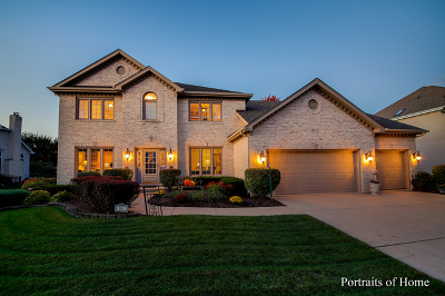Naperville Single Family Home For Sale: 1811 Princess Circle