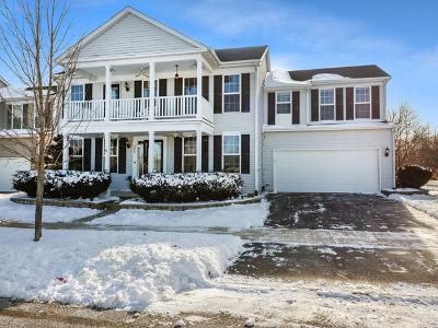 Oswego Single Family Home Contingent: 500 Truman Drive