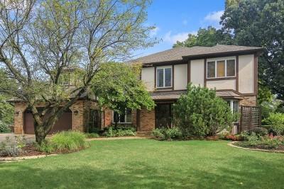 Burr Ridge Single Family Home For Sale: 419 Bennacott Lane