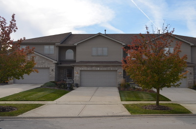Tinley Park Condo/Townhouse New: 18124 Edgar Place