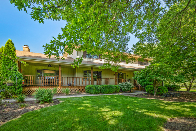 St. Charles Single Family Home New: 6n454 Clydesdale Court