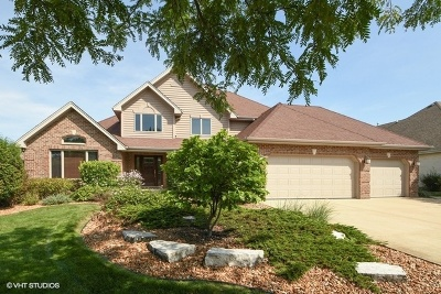 Orland Park Single Family Home New: 10918 Moose Lane