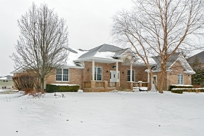 Homer Glen Single Family Home For Sale: 17019 Deer Path Drive