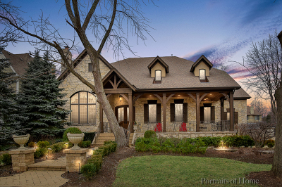 Naperville Single Family Home For Sale: 1025 East Hillside Road