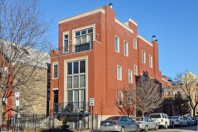 Cook County Condo/Townhouse New: 1101 North Hermitage Avenue #1R