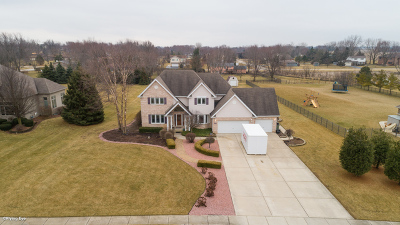 New Lenox Single Family Home For Sale: 22630 South Country Lane