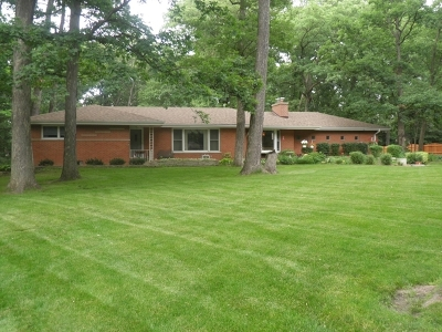 Homer Glen Single Family Home For Sale: 14512 West Walnut Avenue