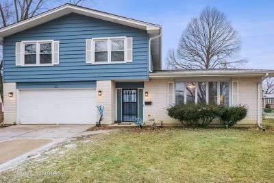 Palatine Single Family Home New: 628 North Rohlwing Road