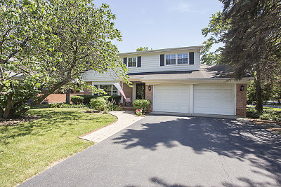 Hinsdale Single Family Home For Sale: 419 Warren Terrace
