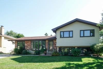 Schaumburg Single Family Home For Sale: 235 Trenton Court