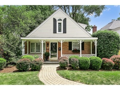 Hinsdale Single Family Home For Sale: 405 Justina Street