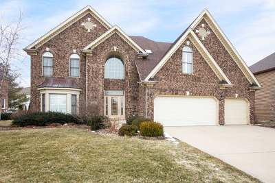 Naperville Single Family Home For Sale: 3303 Tall Grass Drive