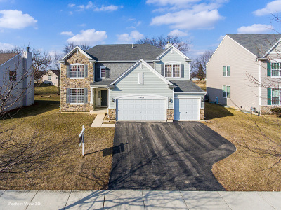 Lockport Single Family Home For Sale: 17636 West Neuberry Ridge Drive