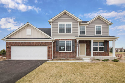 Plainfield Single Family Home For Sale: 15849 Brookshore Court