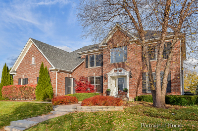 South Elgin Single Family Home For Sale: 915 East Parkview Drive