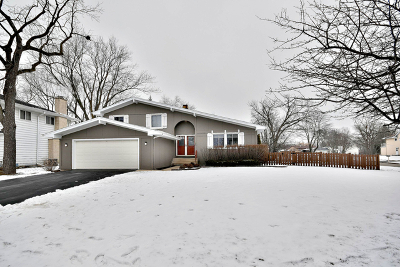 Downers Grove Single Family Home For Sale: 1400 Acorn Avenue