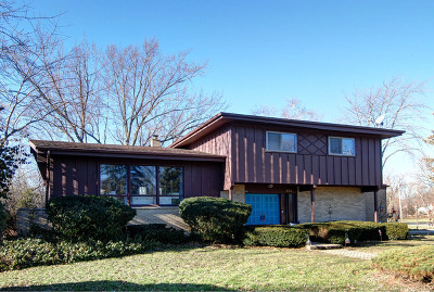 Mount Prospect Single Family Home For Sale: 601 West Manawa Trail