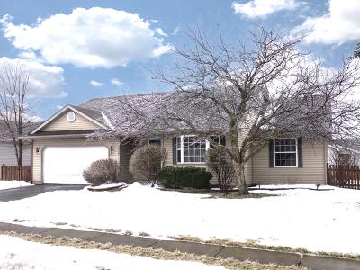 Dekalb Single Family Home For Sale: 1228 Loren Drive