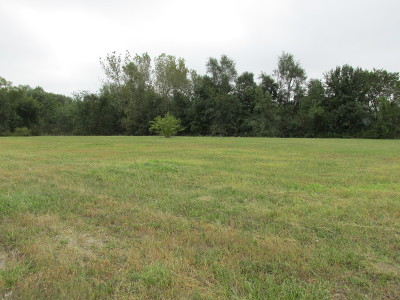 Mokena Residential Lots & Land For Sale: 0000 South 116th & 197th Avenue