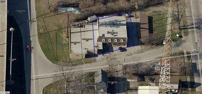 Lansing Commercial For Sale: 17414 Railroad Avenue
