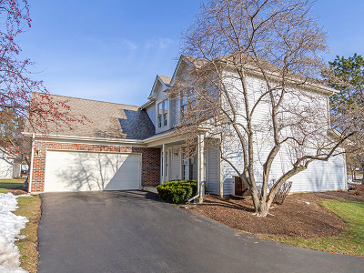 Schaumburg Single Family Home For Sale: 278 Spring Creek Circle