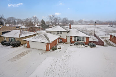 South Holland Single Family Home For Sale: 859 East 169th Street