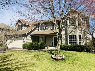 Naperville Single Family Home New: 3720 Candeur Drive