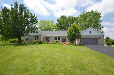 Minooka, Channahon Single Family Home For Sale: 26518 South McKinley Woods Road