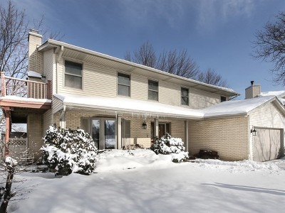 Hoffman Estates Single Family Home For Sale: 883 North Dovington Drive