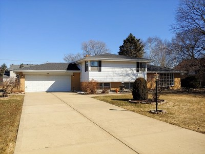 Prospect Heights Single Family Home For Sale: 106 Eleanor Drive