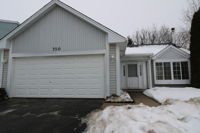 Elgin Single Family Home For Sale: 710 Thorndale Drive
