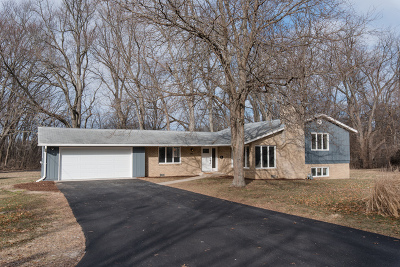 Crystal Lake Single Family Home For Sale: 540 Woodland Drive