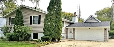 Schaumburg Single Family Home For Sale: 425 South Braintree Drive