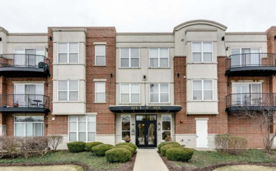Naperville Rental For Rent: 104 East 11th Avenue #101