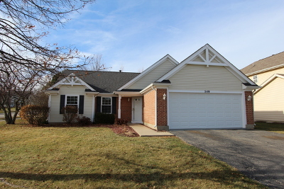 Lake Zurich Single Family Home For Sale: 549 Ascot Court