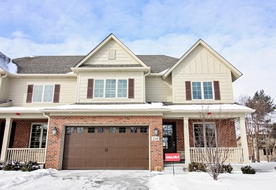 Naperville Condo/Townhouse For Sale: 2341 Kingsley Court