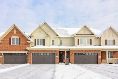 Naperville Condo/Townhouse For Sale: 2303 Kingsley Court
