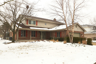 Tinley Park Single Family Home For Sale: 17625 Woburn Road
