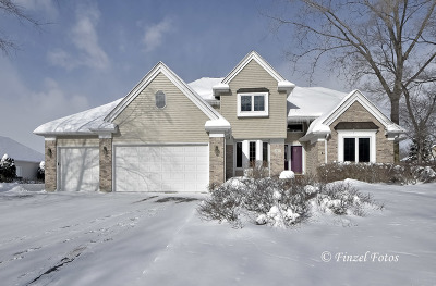 Island Lake Single Family Home For Sale: 123 Tulip Circle
